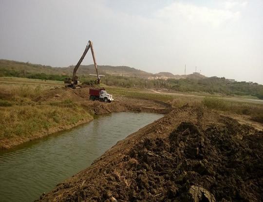 lago del cisne trabajos