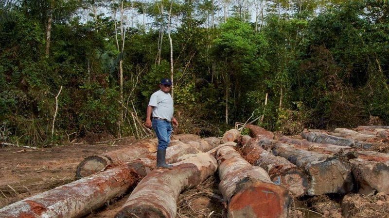 cuenca amazonica