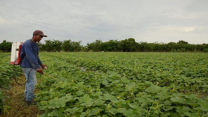Firman convenio para fortalecer el agro en Suan y Repelón