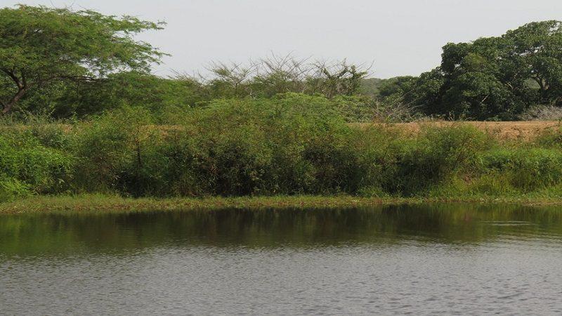 Niña de 13 años se ahogó en jagüey de Ponedera cuando tomaba un baño