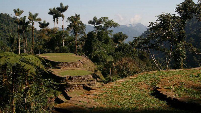 Declaran la Sierra Nevada de Santa Marta como libre de cultivos ilícitos