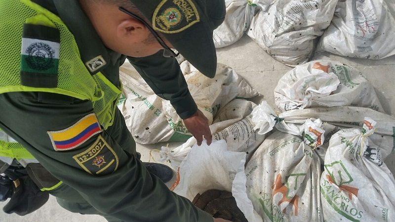 Capturan a hombre que traía 140 babillas de Magangué hacia Barranquilla, en un bus