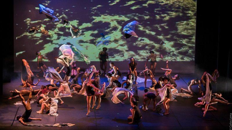 Comienza la semana de la Danza Contemporánea en Barranquilla
