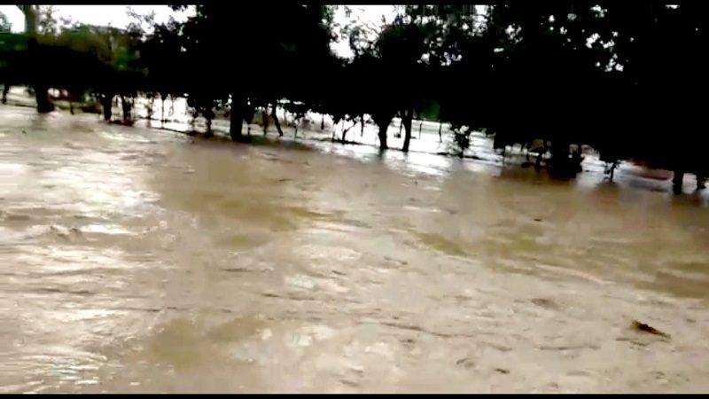 Vídeo: Se desborda arroyo en vereda de Tubará y arrasa con más de cinco mil animales