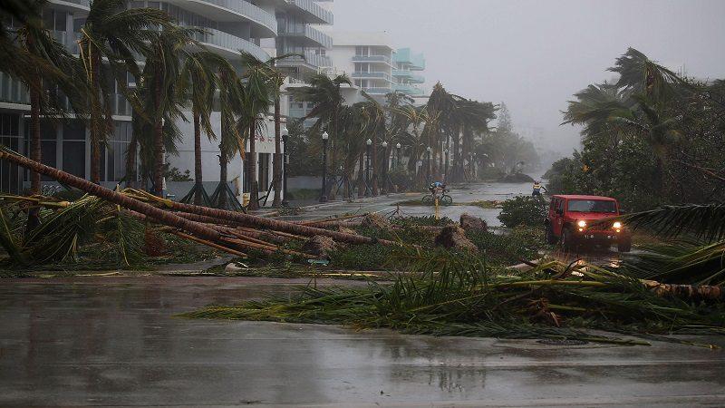 MIAMI BEACH, FL - SEPTEMBER 10: A vehicle passes downed palm trees and two cyclists attempt to ride as Hurricane Irma passed through the area on September 10, 2017 in Miami Beach, Florida. Florida is taking a direct hit by the Hurricane which made landfall in the Florida Keys as a Category 4 storm on Sunday, lashing the state with 130 mph winds as it moves up the coast.   Joe Raedle/Getty Images/AFP == FOR NEWSPAPERS, INTERNET, TELCOS & TELEVISION USE ONLY ==
