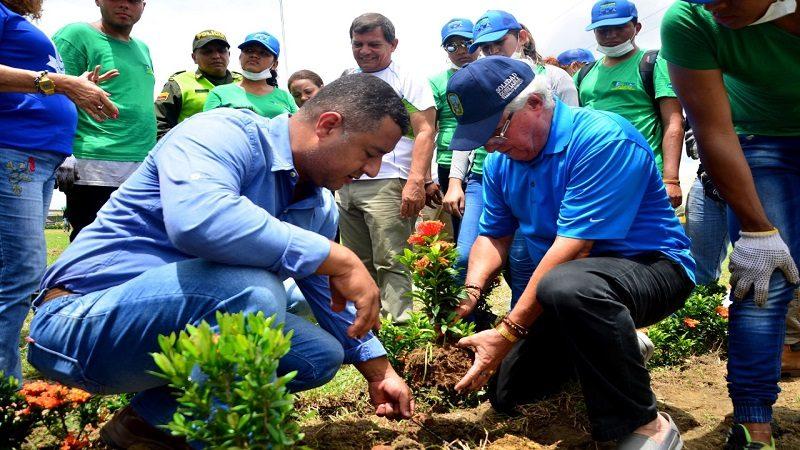 Siembran mil plantas ornamentales para recuperar una rotonda en Soledad