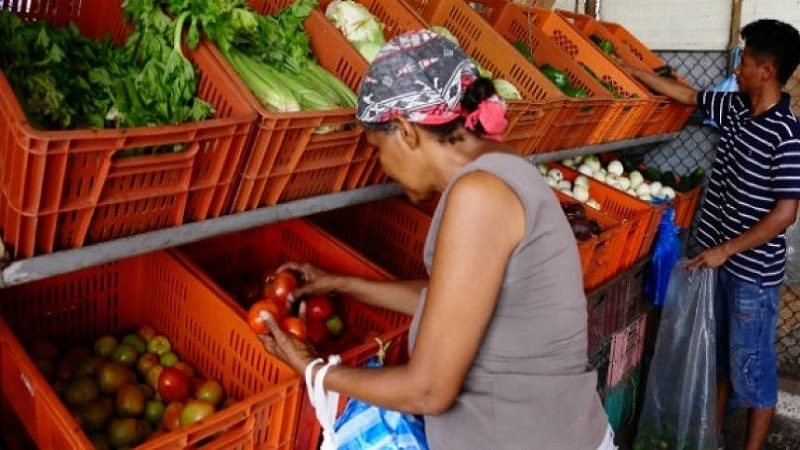En septiembre bajaron los precios de las verduras y hortalizas, las frutas frescas, los granos, cereales, entre otros
