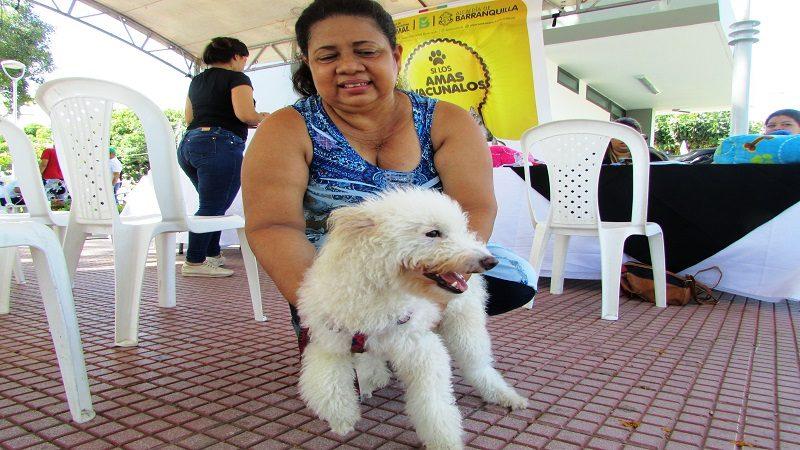 Distrito superó meta en vacunación antirrábica y de bienestar animal