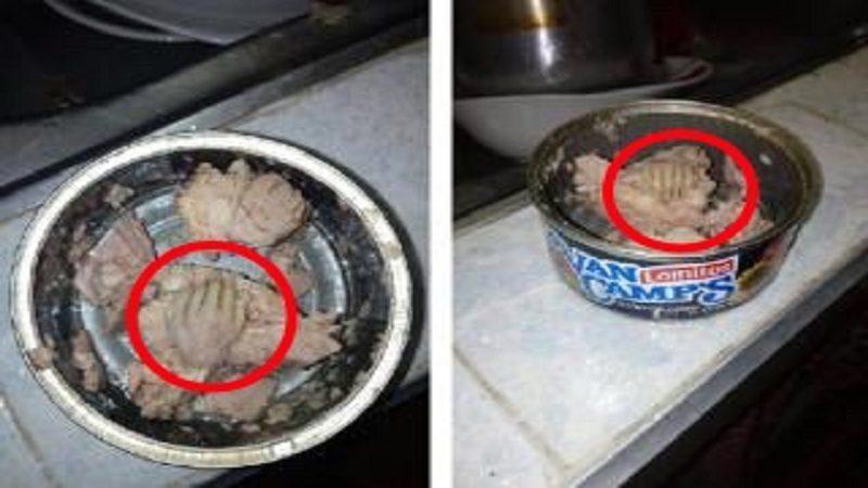 Hombre asegura que encontró una mano en una lata de atún Van Camps