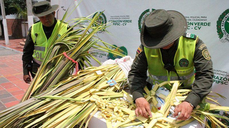 Prohíben el uso y comercialización de palma de cera y animales silvestres en Barranquilla