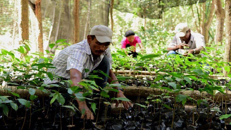 Con formación del SENA, campesinos conservan reserva natural en Luruaco
