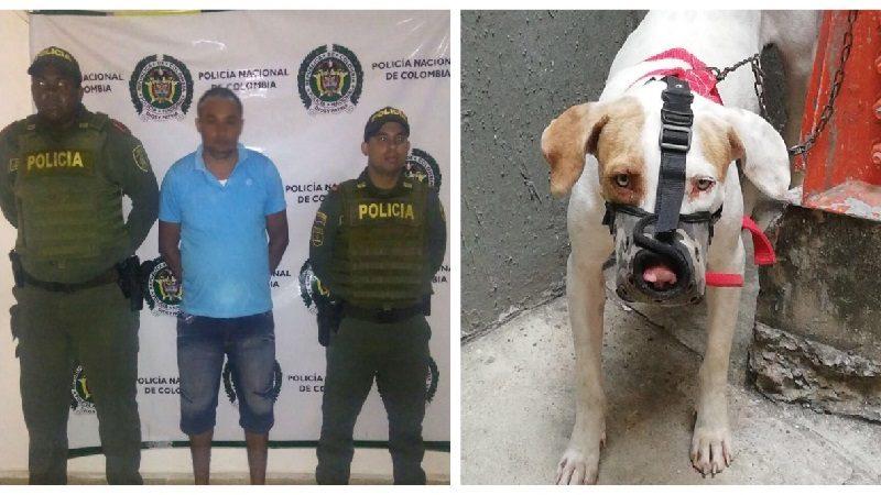 En medio de discusión hombre ordenó su perro pitbull atacar a una mujer, en Luruaco