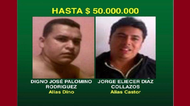 Policía aumenta a $50 millones recompensa por 'Dino Palomino' y 'Castor'