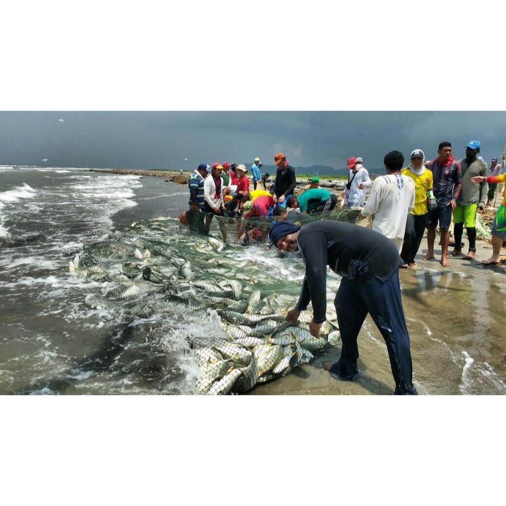 pesca-milagrosa-2