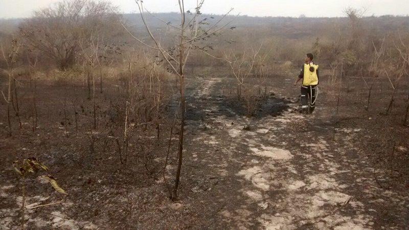 incendio forestal malambo