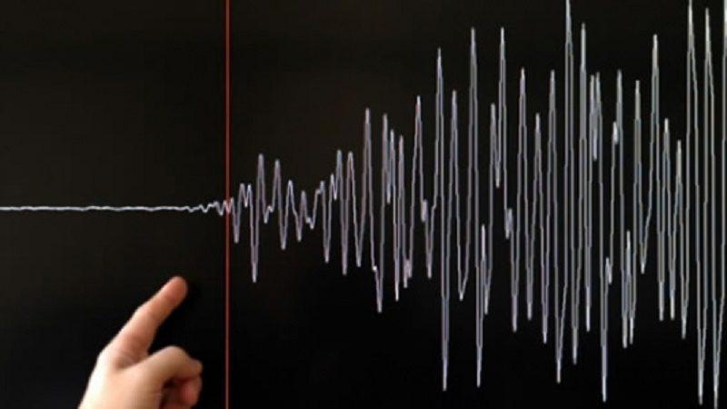 terremoto160115