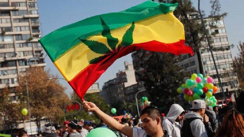 En Chile marchan para exigir el derecho a cultivar marihuana