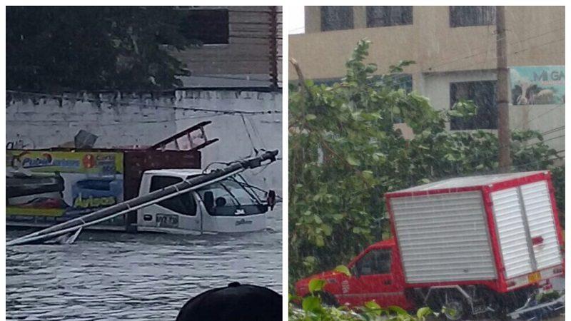 Árboles y postes caídos deja fuerte aguacero de este jueves en Barranquilla