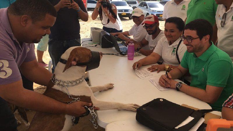 Distrito realiza II Animalatón para registrar perros potencialmente peligrosos