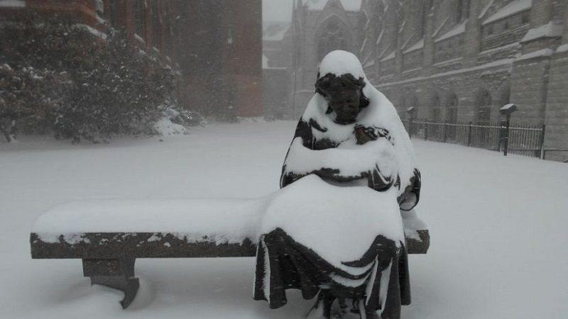 Al menos 19 muertos deja ola de frío en Estados Unidos