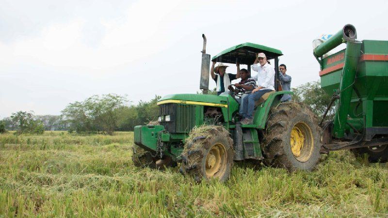 Con alianzas agrícolas, 70 familias campesinas de Repelón producen a gran escala