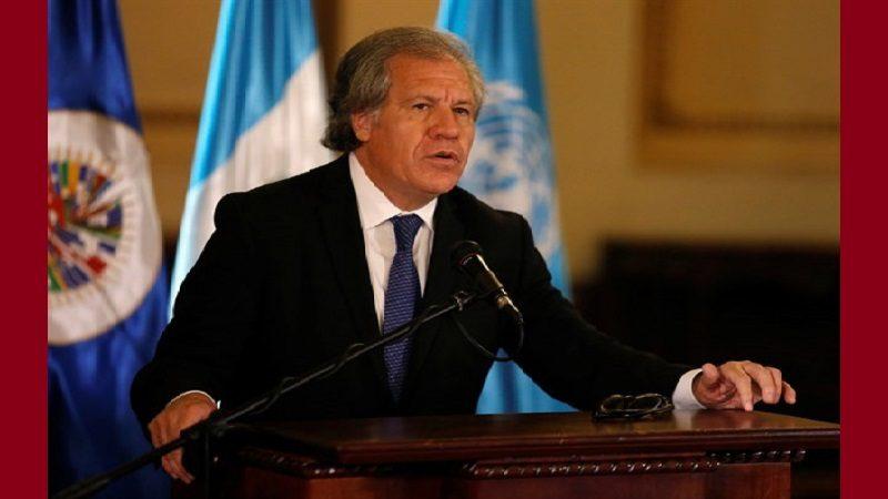 OEA felicita al Gobierno de Colombia por retomar diálogos de paz con el ELN