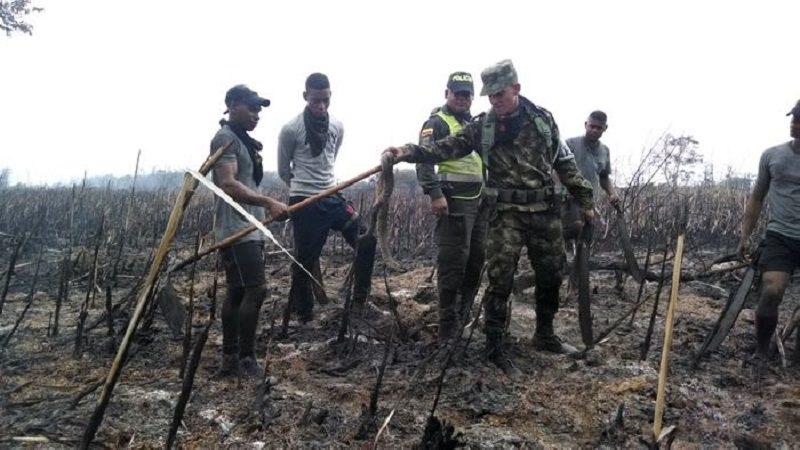 Con 113 efectivos custodiarán Parque Isla Salamanca, de delincuentes que provocan incendios