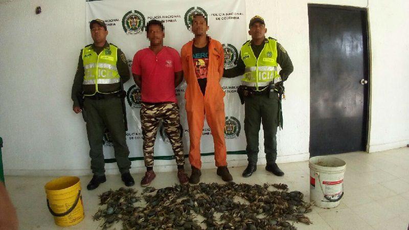 Capturan a dos hombres que cazaron 700 cangrejos en Juan de Acosta para venderlos