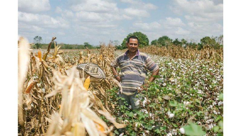 Colombia y Canadá trabajan en proyectos para el apoyo financiero al sector agropecuario