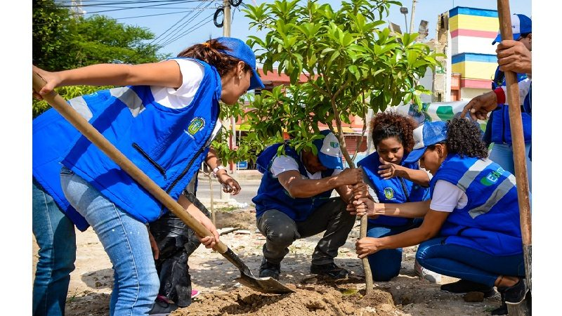 Con siembra de árboles, Edumas recupera entorno de antiguo CAI de Soledad 2000