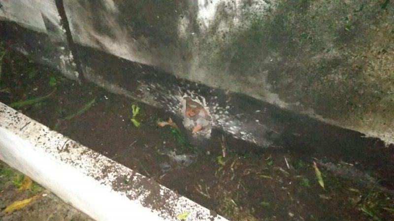 Lanzan artefacto explosivo contra frigorífico Santacruz, en Malambo