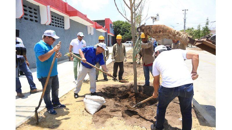 Alcaldía adelanta siembra de árboles en alrededores de canalización del arroyo de la 21