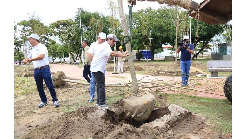 Con 'Siembra Barranquilla' tendremos una ciudad más sostenible