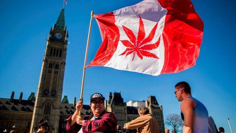 Canadá, segundo país del mundo que legaliza la marihuana