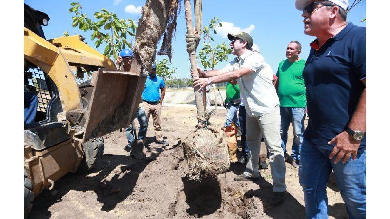 Alcalde Char lideró siembra de 793 árboles en sector del arroyo León