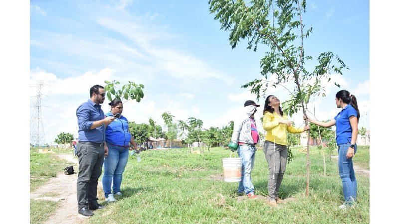 Con 500 árboles cambiarán el entorno del barrio Nueva Esperanza en Soledad