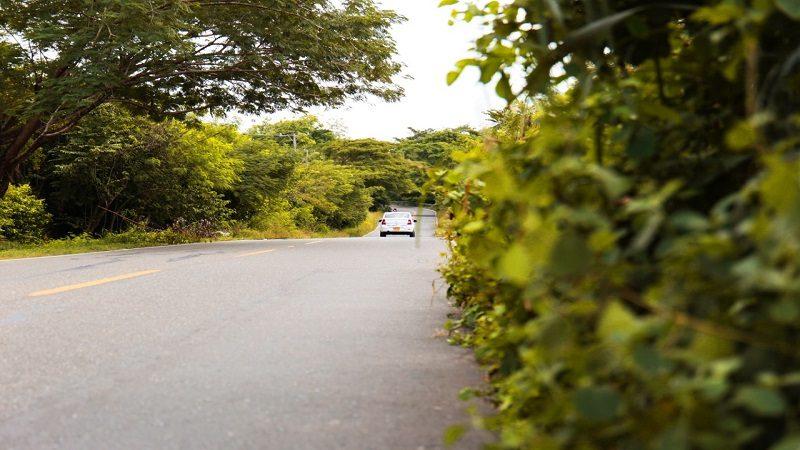Tránsito del Atlántico anuncia $1.500 millones para limpiar vías que están llenas de maleza