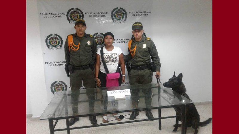 'Modric', el perro policía que le declaró la 'guerra' a la droga en Atlántico