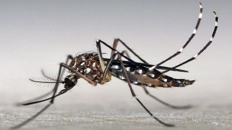 Gobernación se une a la estrategia 'Vuelta a Colombia contra el dengue', promovida por Minsalud