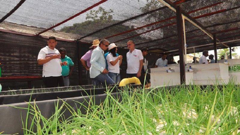 Minagricultura garantiza más recursos para el sector agro en Atlántico