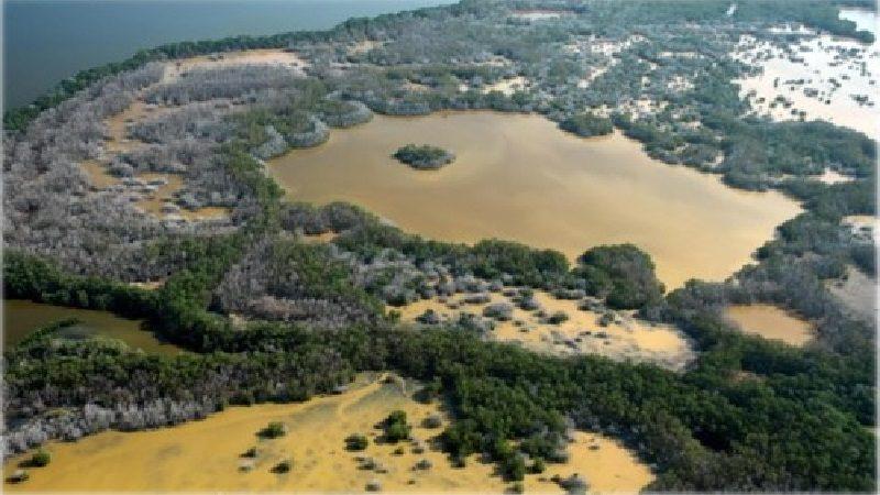 Procuraduría reclama medidas urgentes para proteger la Ciénaga Grande de Santa Marta