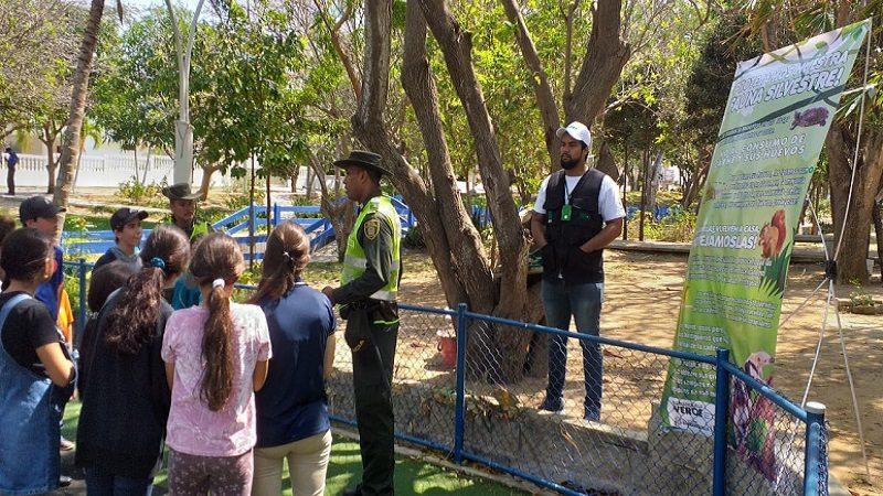 Autoridades realizan control al tráfico de animales silvestres y palma de cera, en celebración de Semana Santa