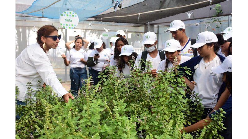Invernadero de la Alcaldía de Barranquilla, entre los mejores proyectos socioambientales en Latinoamérica