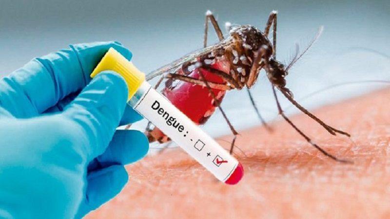 Durante el año 2019 se ha disparado el dengue en Colombia