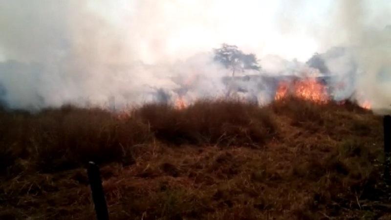 Vídeo: Incendio arrasó con 30 hectáreas de fincas en Ponedera